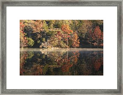 Reflections Of Fall Framed Print by Cindy Rubin