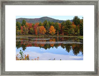 Reflections Of Fall Framed Print by Kerri Mortenson