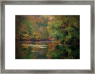 Reflections Of Fall Framed Print by Terry Eve Tanner