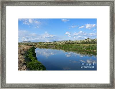 Reflections Of Spring Framed Print by Mike  Dawson