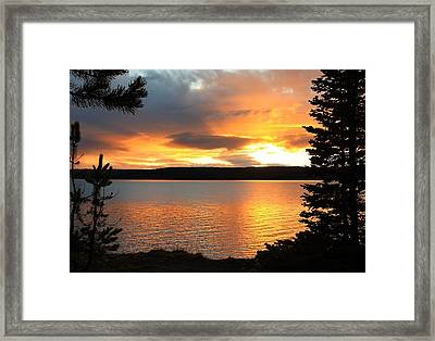 Reflections Of Sunset Framed Print by Athena Mckinzie