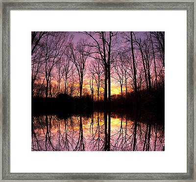 Reflections Of The Day Framed Print by Daphne Sampson
