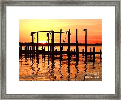 Reflections Of The Day Framed Print by Linda Mesibov