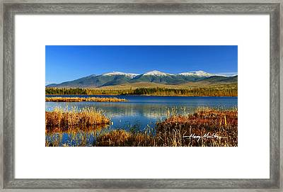 Reflections On Cherry Pond Framed Print