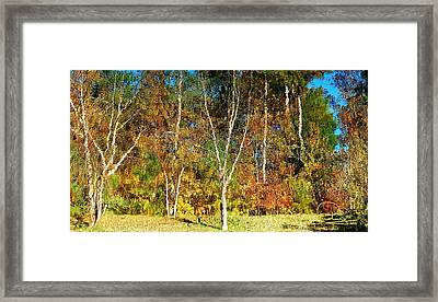 Framed Print featuring the photograph Reflections On Fall by Ludwig Keck