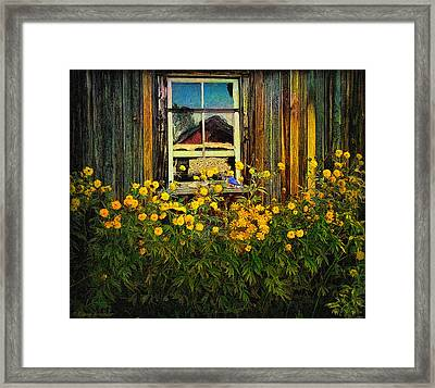 Reflections On Happiness Framed Print by Lianne Schneider