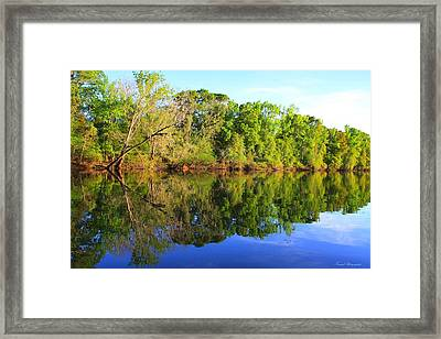 Reflections On The River Framed Print