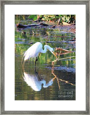 Reflections On Wildwood Lake Framed Print