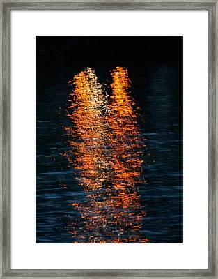 Reflections Framed Print by Pamela Walton