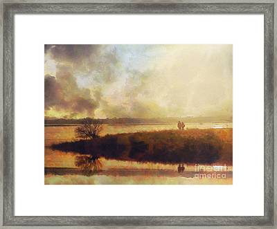 Reflections Framed Print by Pixel Chimp