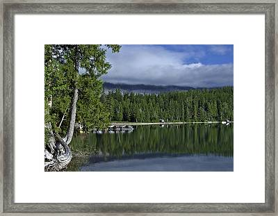 Reflections Framed Print by SEA Art