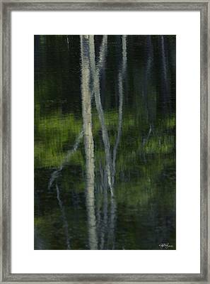 Reflections Framed Print by Skip Tribby