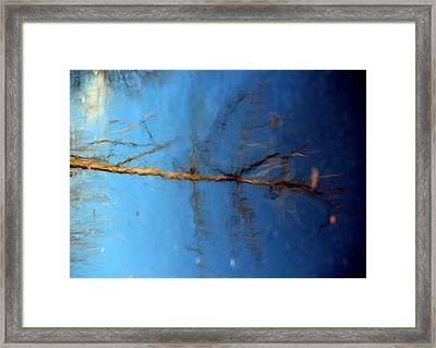 Reflections Three Framed Print