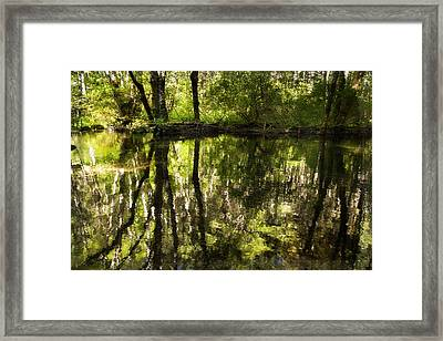 Reflections Two Framed Print