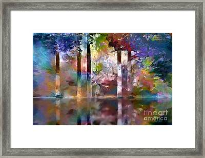 Reflections Framed Print by Ursula Freer