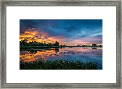 Reflections Framed Print by Vlad Costras