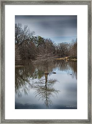 Framed Print featuring the photograph Reflections by Yvonne Emerson AKA RavenSoul