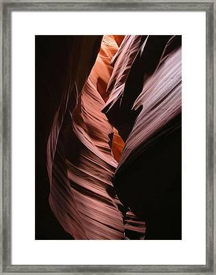 Reflective Antelope Framed Print