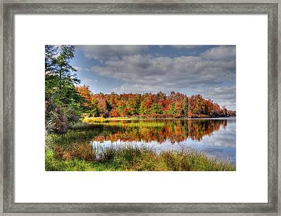 Reflective Autumn Framed Print by David Simons