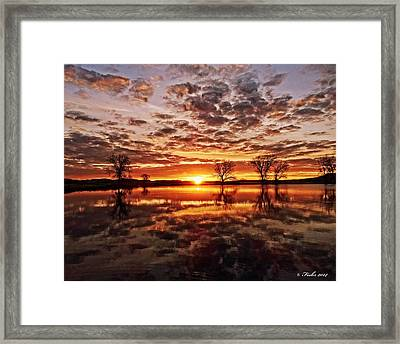 Reflective Dawn Framed Print