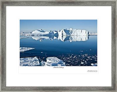 Reflective Icebergs Framed Print by David Barringhaus
