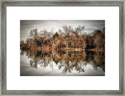 Reflective Morning Framed Print