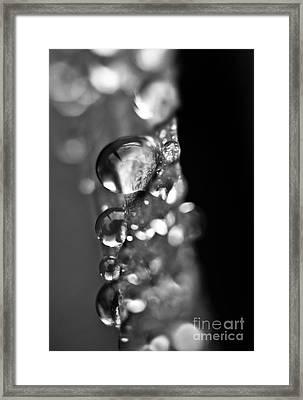 Reflective Rain Framed Print