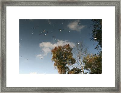 Framed Print featuring the photograph Reflective Thoughts  by Neal Eslinger