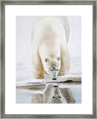Reflexion On A Reflection Framed Print
