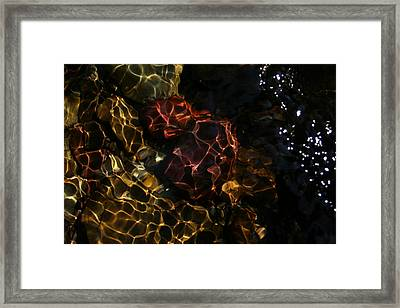 Refracted Sunlight Framed Print by Kevin Sebold