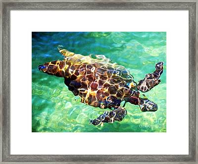 Framed Print featuring the photograph Refractions - Nature's Abstract by David Lawson