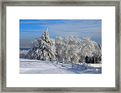 Refresh Framed Print