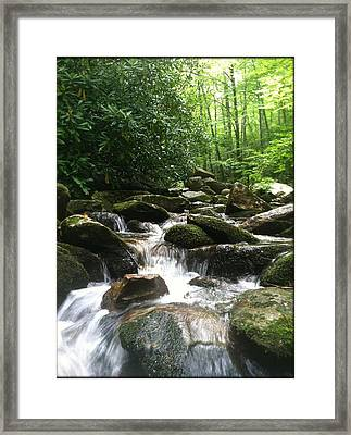 Refreshing Waters Framed Print