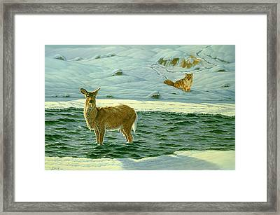 Refuge Framed Print by Paul Krapf