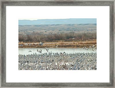Refuge View 1 Framed Print