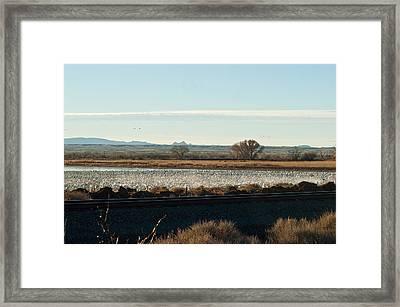 Refuge View 4 Framed Print