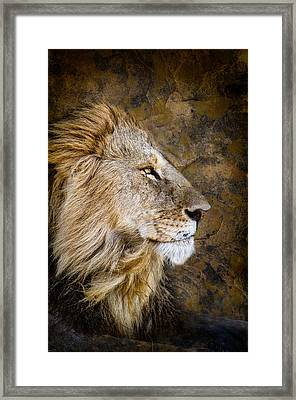 Regal Bearing Framed Print by Mike Gaudaur