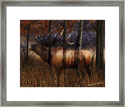 Regal Elk Framed Print by Wishes and Whims Originals By Michelle Jensen