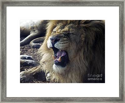 Regal Of Menace Framed Print by Rick Bransby