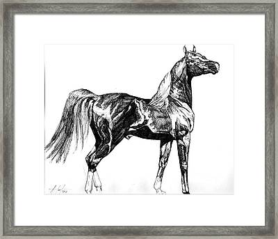 Regal Stance Framed Print