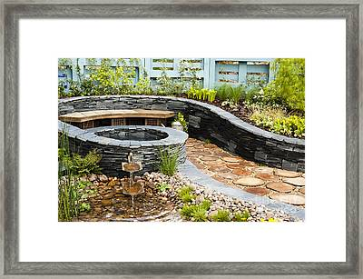 Regeneration Framed Print by Anne Gilbert