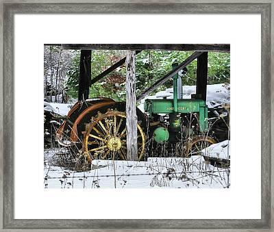 Rein Deere Framed Print