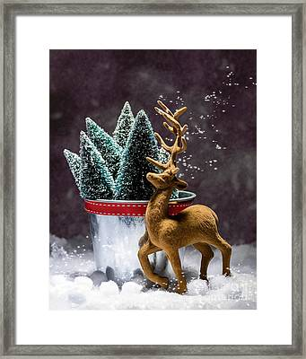 Reindeer At Christmas Framed Print