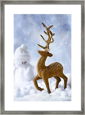 Reindeer In Snow Framed Print