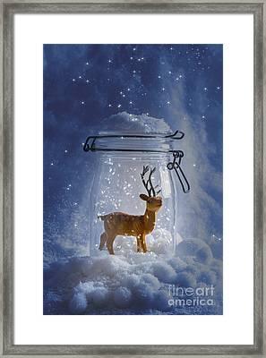 Reindeer Snowglobe Framed Print by Amanda Elwell
