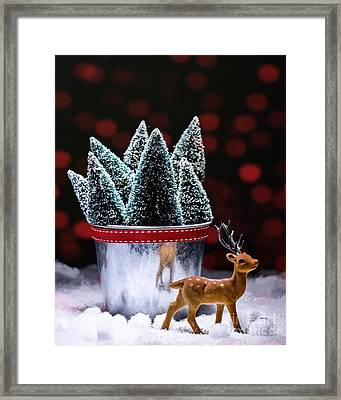 Reindeer With Christmas Trees Framed Print