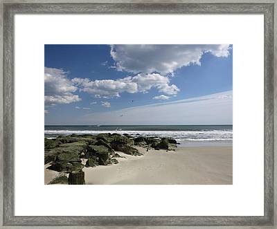 Rejoicing In The Day Framed Print