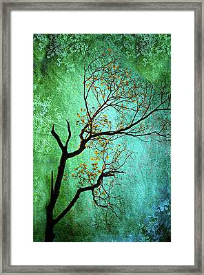 Jade Framed Print by Diana Angstadt