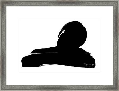 Framed Print featuring the pyrography Relax 5 by Evgeniy Lankin