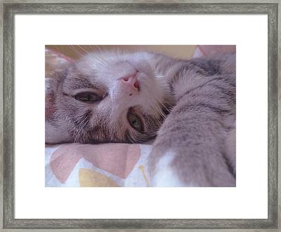 Relax Framed Print by Lucy D